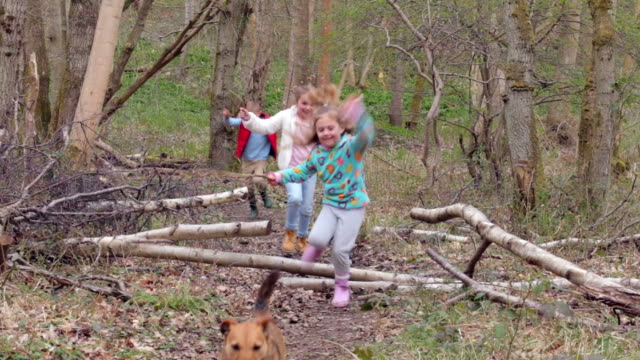Group Of Children Playing Game In Forest video