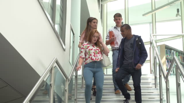 Group Of College Students Walking Down Stairs In Building video