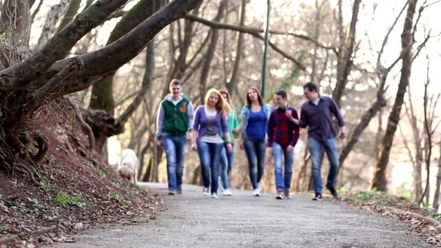 Grupo de estudiantes universitarios a - vídeo