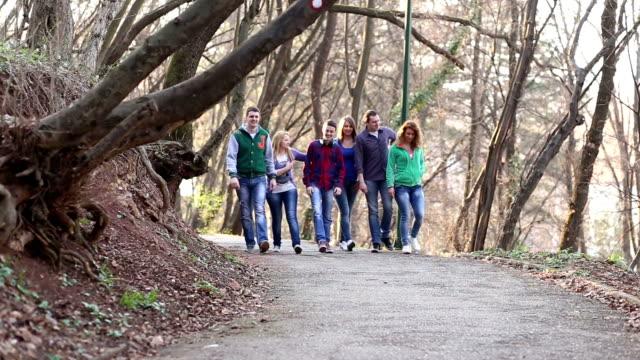 Grupo de estudantes universitários de caminhada - vídeo