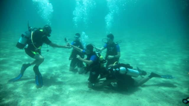 vídeos de stock e filmes b-roll de a group of divers underwater taking a scuba diving course - fundo oficina