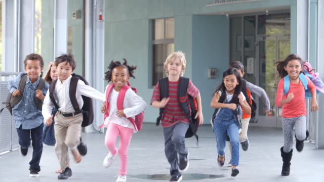 Group of elementary school kids running in a school corridor Group of elementary school kids running in a school corridor school building stock videos & royalty-free footage