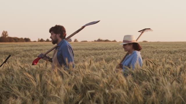 group of farmers going along wheat filed - four seasons filmów i materiałów b-roll