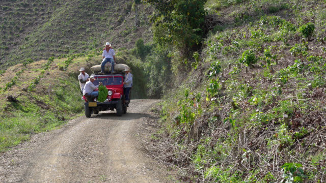 Group of farmers on car with coffee sacks and a branch of plantain video