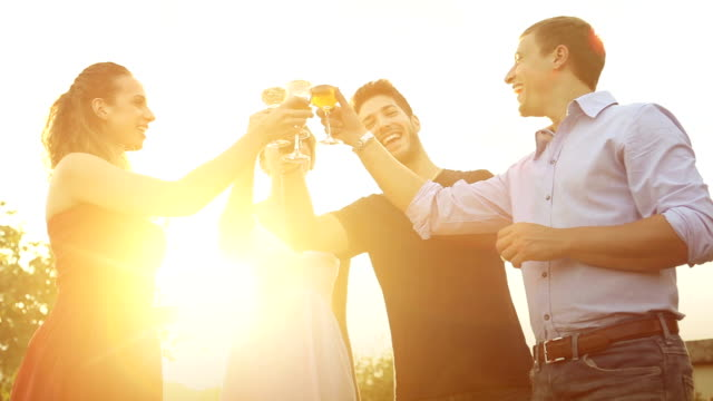 Group of friends at summer party Group of friends drinking wine in cheerful moment aperitif stock videos & royalty-free footage