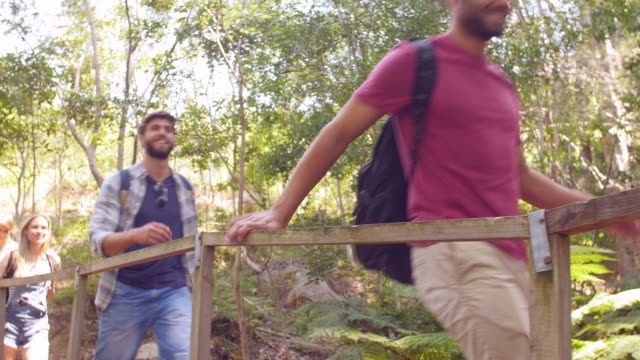 Group of friends crossing a small bridge in a forest video