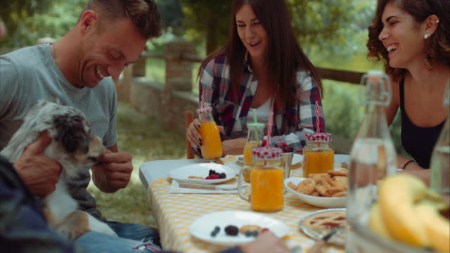 gruppe von freunden, frühstück im freien in einer traditionellen landschaft zu tun. in zeitlupe erschossen - brunch stock-videos und b-roll-filmmaterial