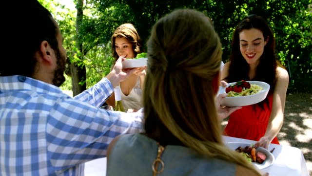 Group of friends enjoying meal at outdoor lunch video