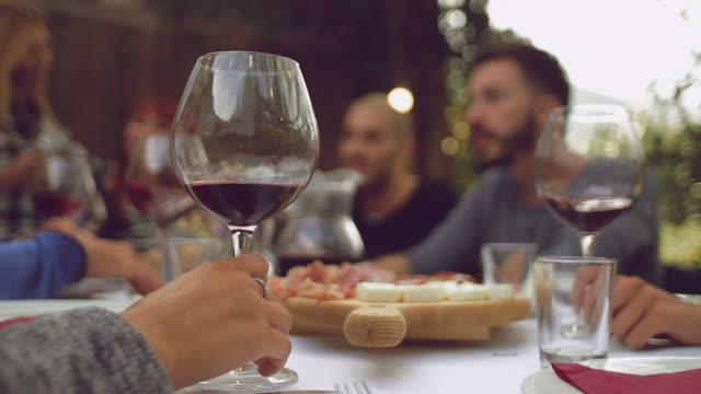 stockvideo's en b-roll-footage met groep vrienden genieten van samen op een diner - dineren