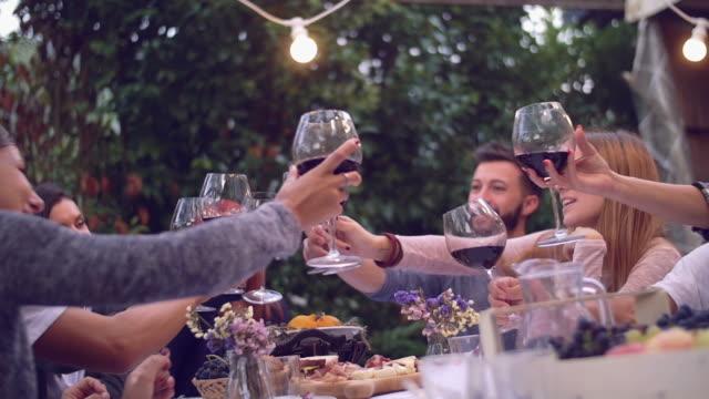Group of friends enjoying together at a dinner party video