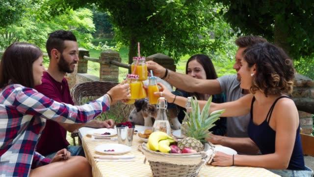 gruppe von freunden, die eine pause auf dem lande zusammen trinken säfte - brunch stock-videos und b-roll-filmmaterial