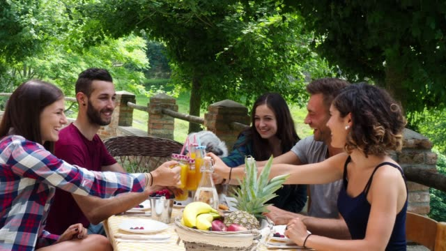 Group of friends having a break in the countryside together drinking juices video
