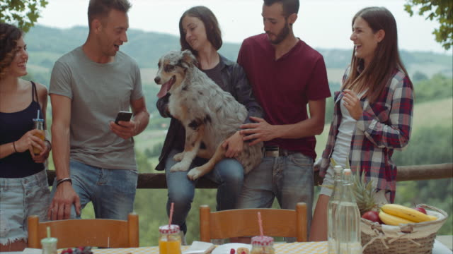 group of friends having a break in the countryside  with a funny dog. shot in slow motion video