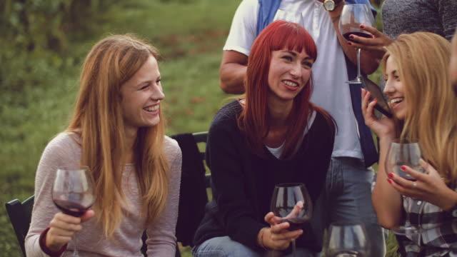Group of friends having fun in the vineyard Group of friends having fun in the vineyard aperitif stock videos & royalty-free footage
