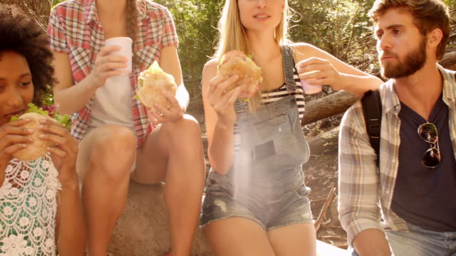 Group of friends hiking in a forest take a break to eat video