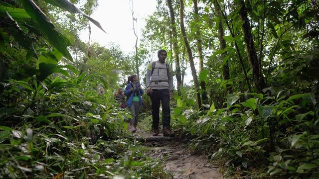 stockvideo's en b-roll-footage met groep vrienden die in een bos wandelen - er even tussenuit