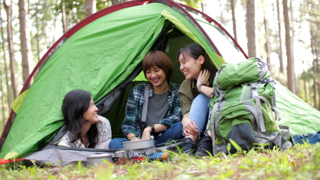 Group of friends in outdoor camping at pine campsite area enjoying inside a tent