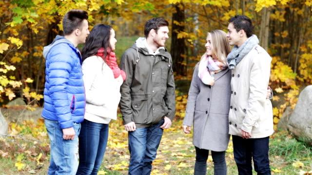 Grupo de amigos hablando en el Parque otoño - vídeo