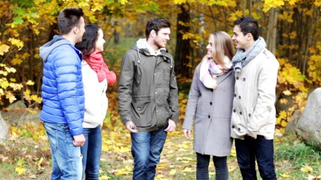 grupo de amigos conversando no parque outono - vídeo