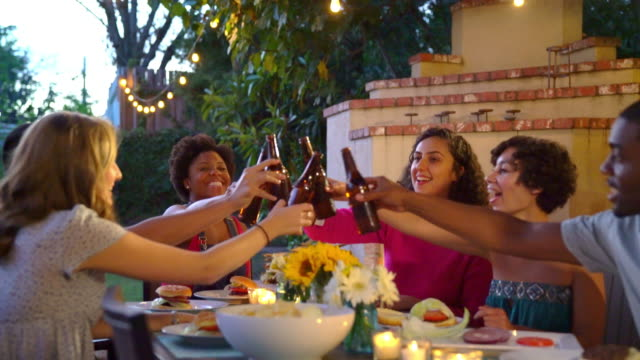 Group of friends toasting at a party video