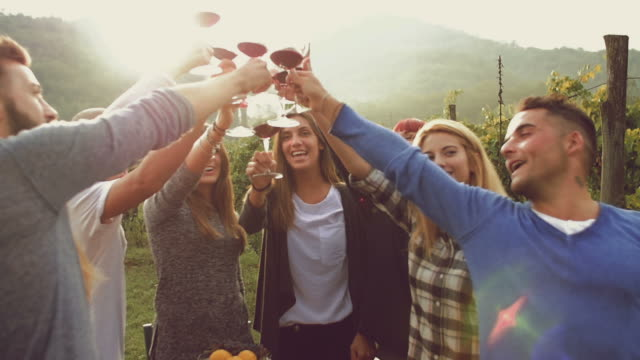 Group of friends toasting with red wine in the vineyard Group of friends toasting with red wine in the vineyard red wine stock videos & royalty-free footage