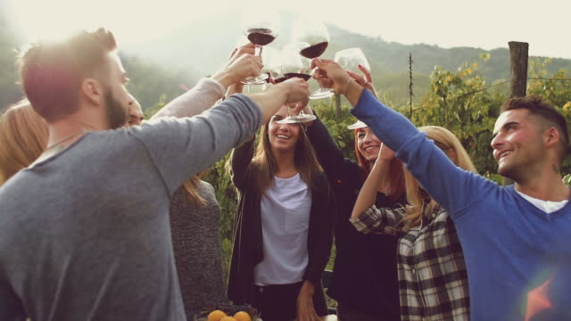 group of friends toasting with red wine in the vineyard - azienda vinivola video stock e b–roll
