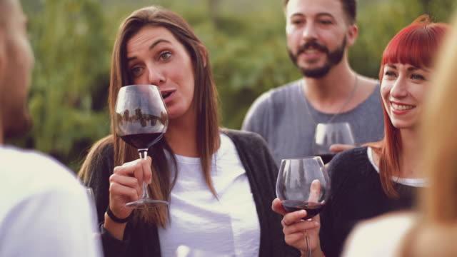 友人の畑の赤ワインと乾杯のグループ - 赤ワイン点の映像素材/bロール