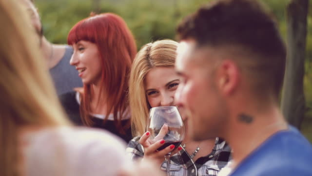 Group of friends toasting with red wine in the vineyard Group of friends toasting with red wine in the vineyard aperitif stock videos & royalty-free footage