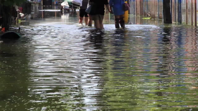 Group of girls walking on flooding road. video