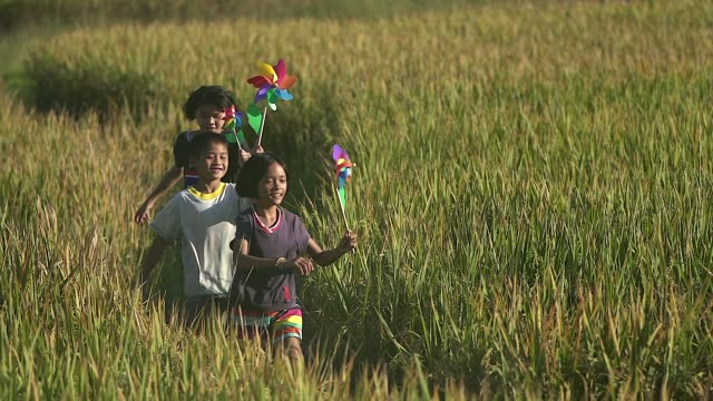 group of happy asian children running with pinwheels at the rice field. - energia sostenibile video stock e b–roll