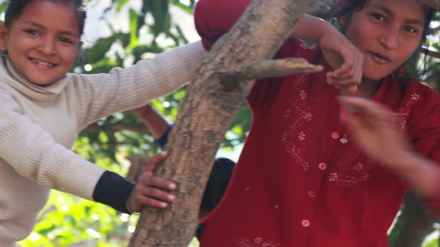 Group of happy Indian Children playing together in village by climbing tree branches