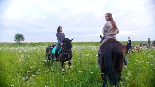 Group of happy young women riders on horseback stands among the meadow Group of happy young women riders on horseback stands among the meadow, close up animal markings stock videos & royalty-free footage
