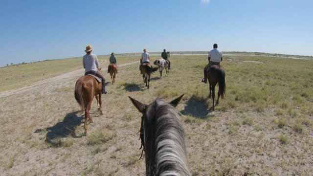 A group of horse riders on safari walking up to a large herd of zebras and wildebeest at a waterhole in the Makgadikgadi Pans,Botswana