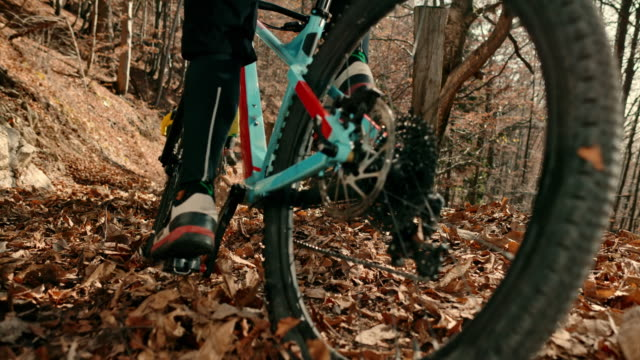 SLO MO Group of mountain bikers riding in the forest in fall