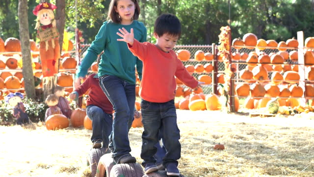 group of multi-ethnic children at fall festival playing - zucca video stock e b–roll