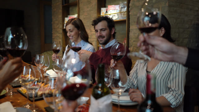 Group of people during a wine tasting moving the wine and then smelling it's aroma Group of people during a wine tasting moving the wine and then smelling it's aroma - Food and drinks concepts winetasting stock videos & royalty-free footage