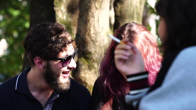 gruppo di persone / amici che si divertono al parco - sigaretta video stock e b–roll