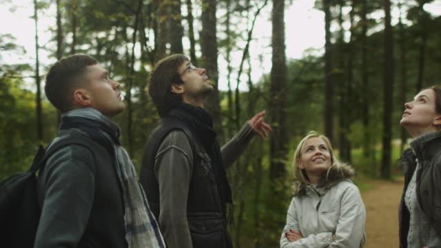 vidéos et rushes de groupe de personnes dans les vêtements d'automne sont debout dans une forêt et regardant autour. - randonnée équestre