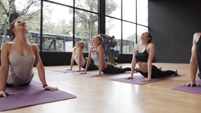 4k uhd : группа людей растяжения в классе йоги. - class стоковые видео и кадры b-roll