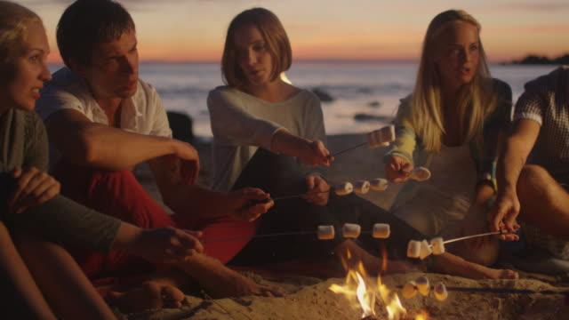 gruppe von menschen in der nähe von lagerfeuer frying marshmallows - teenage friends sharing food stock-videos und b-roll-filmmaterial
