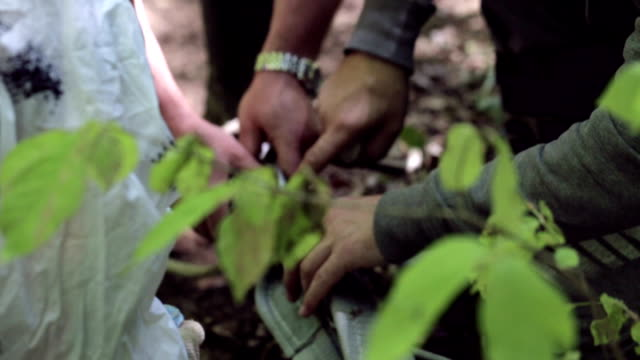 group of people preparing carabine for use winch at forest. - attività agricola video stock e b–roll