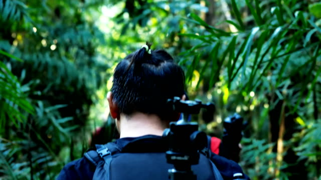 Group of photographer with backpacks is walking in forest and smile to you. Adventure, travel, tourism,  and photograph concept.