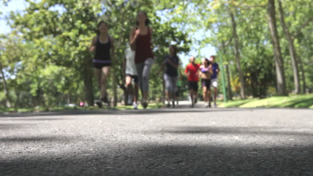 Group Of Runners Jogging Through Park video