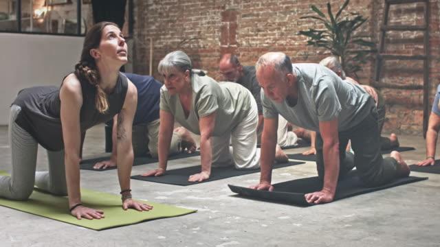 grupp av seniorer träning i yogaklass - mature women studio grey hair bildbanksvideor och videomaterial från bakom kulisserna