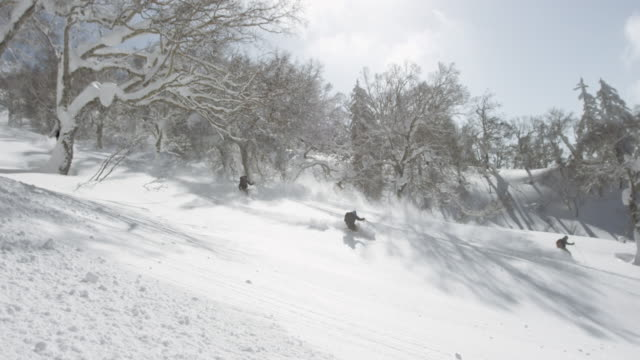 Group of skiers in powder snow video