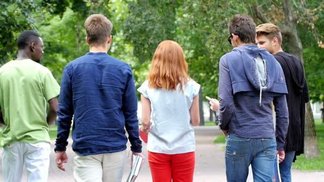 Group of student on footpath outdoor. back view. slow motion video