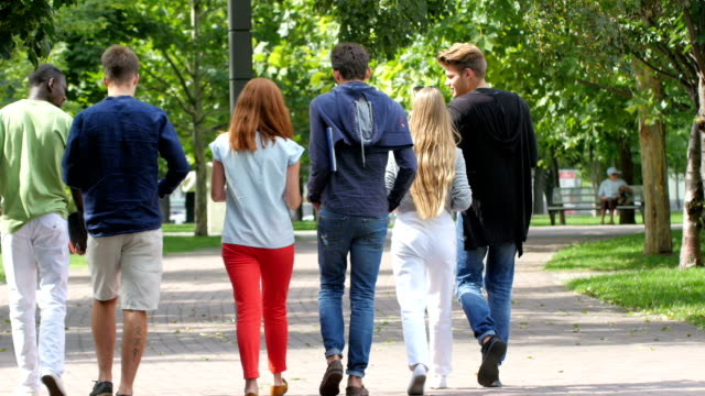 Group of students on footpath outdoor. back view video
