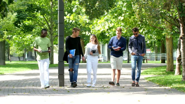 Group of students with notebook on footpath outdoor video
