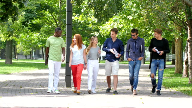 Group of stylish students with notebook on footpath outdoor video