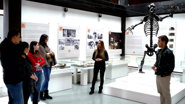 博物館の観光客のグループ - 展示点の映像素材/bロール